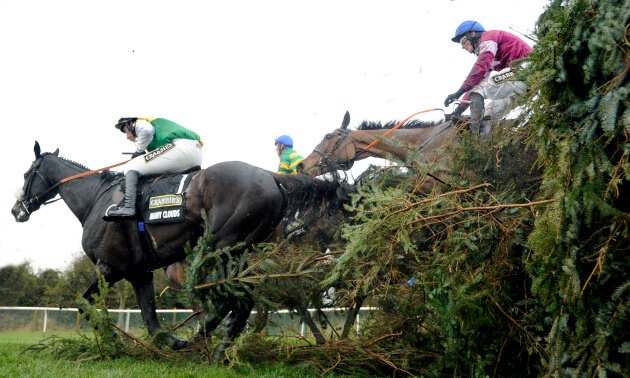 rule_the_world_grand_national_fence_630_x_3781.jpg