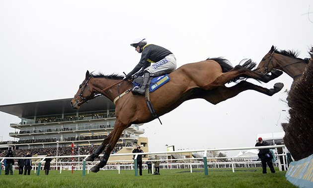 seeyouatmidnight_fence_close-up_cheltenham_630_x_3780.jpg