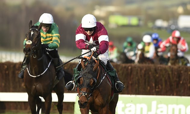 tiger_roll_cheltenham_close-up_630_x_3780.jpg