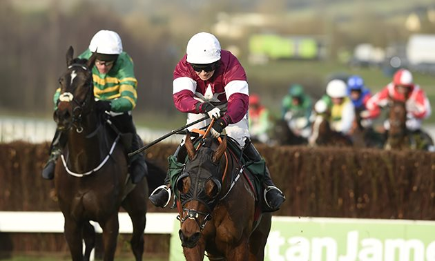 tiger_roll_cheltenham_close-up_630_x_3784.jpg