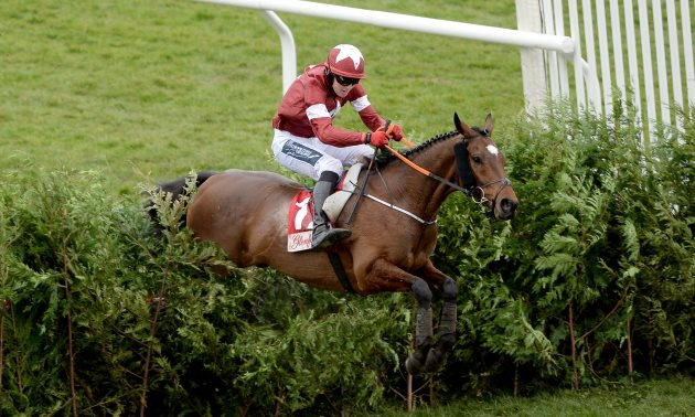 tiger_roll_cross_country_fence_cheltenham_630_x_3786.jpg