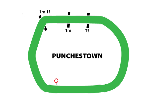 Punchestown map