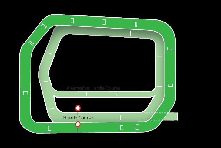 Punchestown map