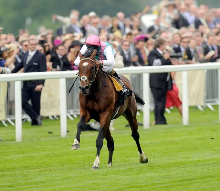 queen anne stakes betting lines